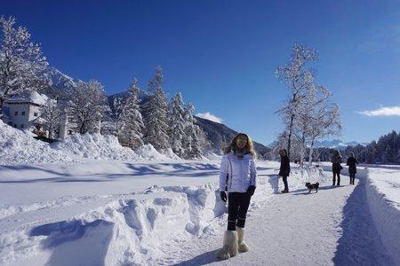 Wildsee & Pfarrhügel Winterrundwanderung