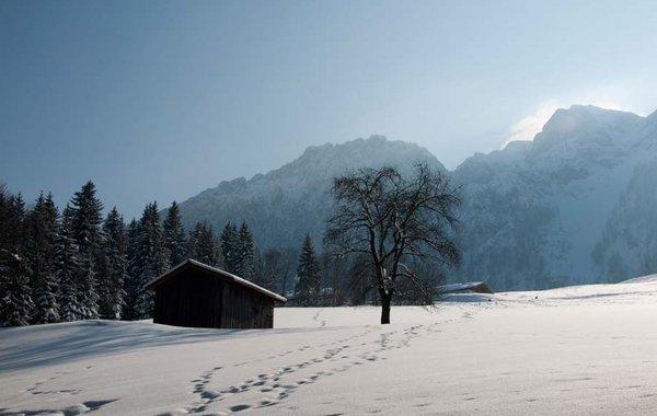 Winterlandschaft bei der Aschingeralm im Kufsteinerland