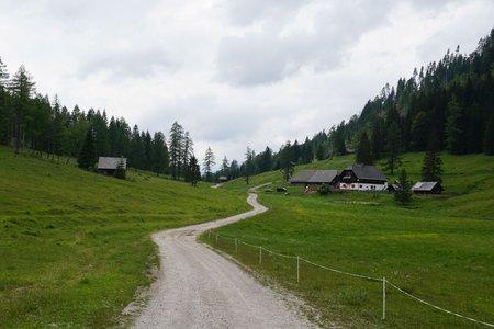 Von Ortsee über die Bodenalm nach Techendorf