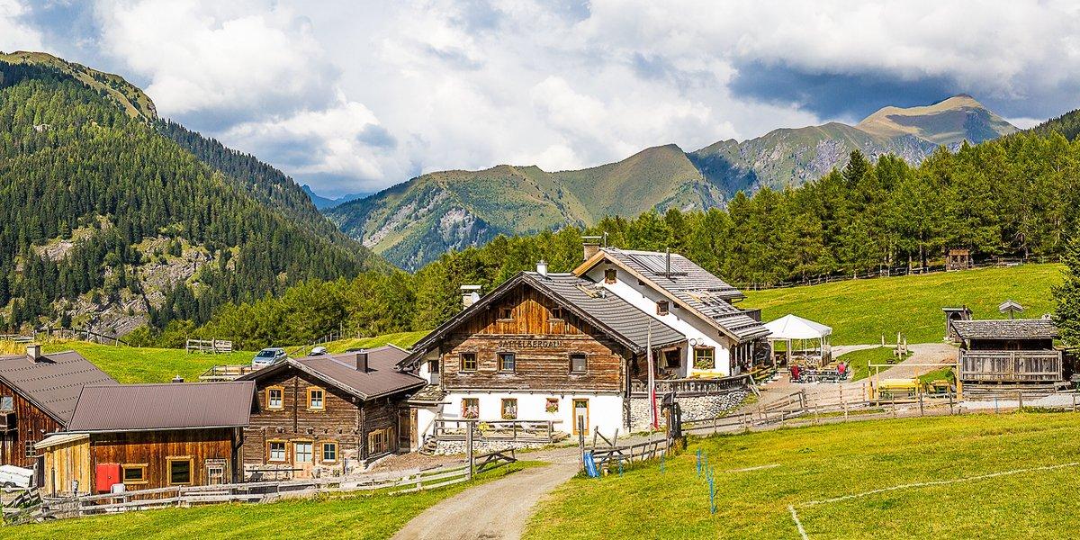 Sattelbergalm Wipptal Tirol