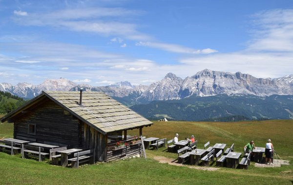 Traumhafte Almen mit wunderschönen Dolomitenblicken