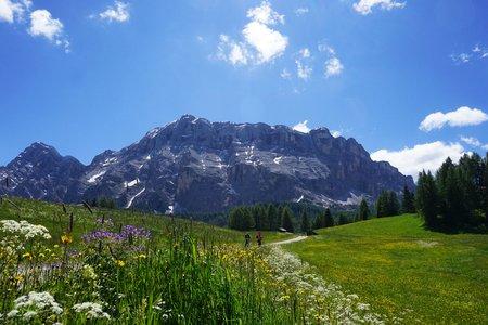 Hörgenuss in der Natur von Tirol