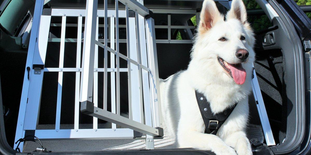 Hundebox