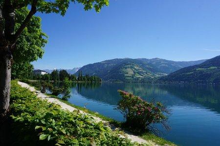 Von Bruck um den Zeller See
