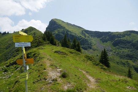 Wildpark-Gebrajoch-Runde von Unteraurach