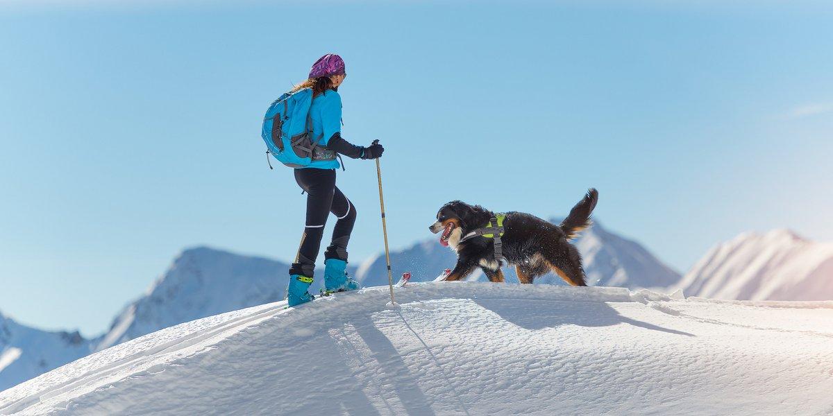Mit Hund im Schnee