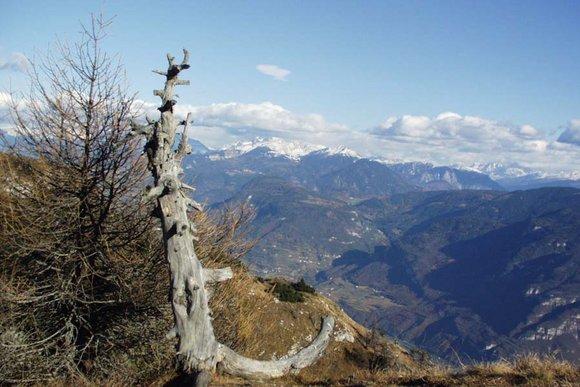 Südtiroler Unterland, Kaltern, Eppan
