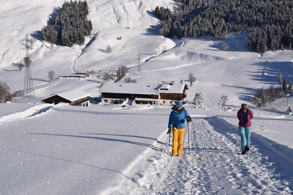 Winterwanderungen in Tirol