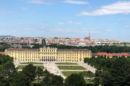 Wien, Wien, nur du allein - ein Tipp für Städtereisende