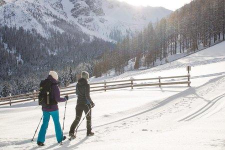 Energietanken im Winter - Premiumwinterwanderwege Wipptal