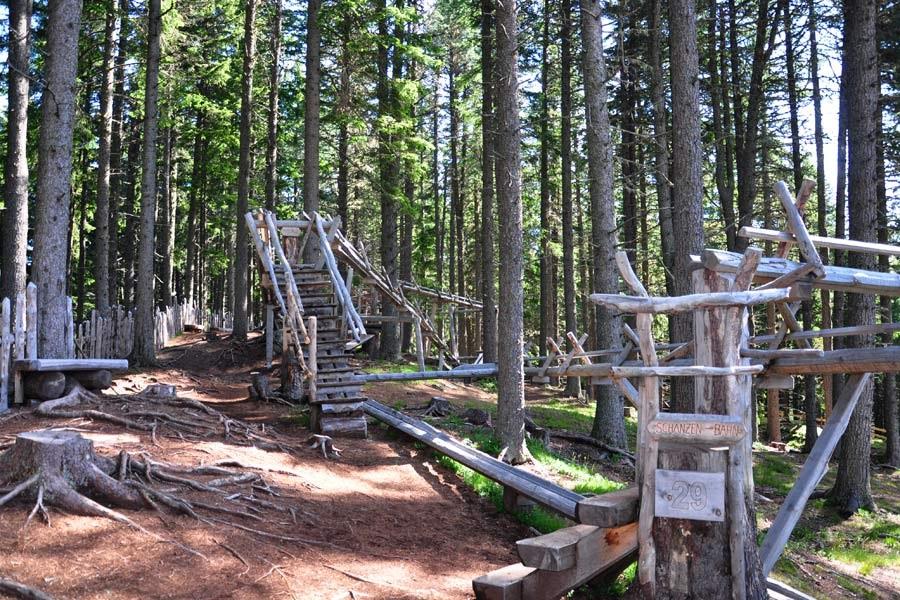 Bahnen aus Zirbenholz für die Zirbenkugeln im Kugelwald, Glungezer (c) Hall-Wattens-Tourismus