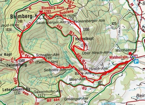 Heiglkopf-Zwieselberg (1205/1348 m) von der Waldherrnalm
