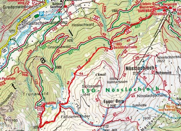 Trunahütte (1750 m) über die Gerichtsherrnalm
