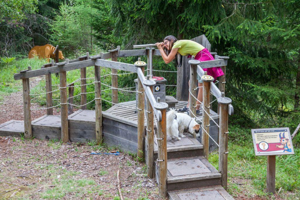 Wildpark Erlebnisweg Pitztal