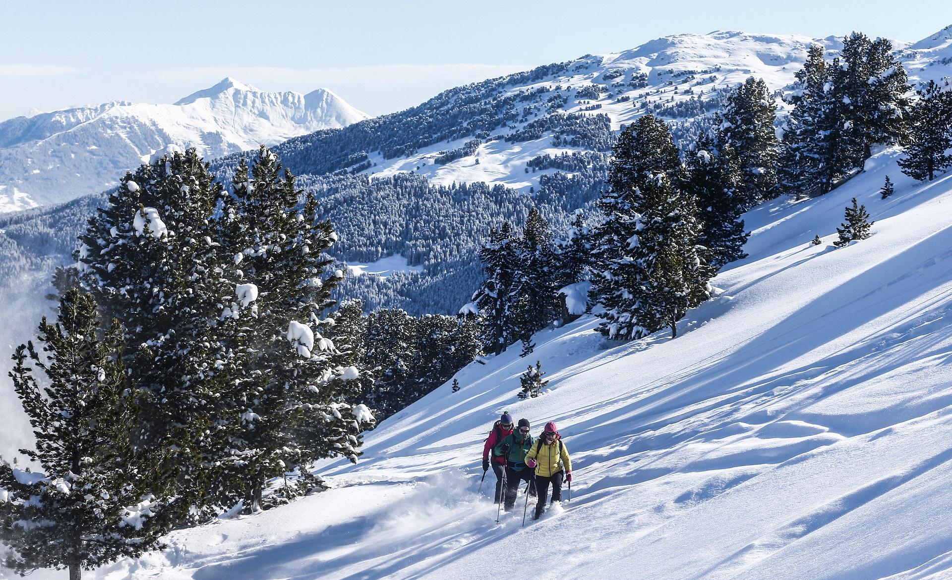 winterwandern schneeschuhe tuxer alpen, hall-wattens
