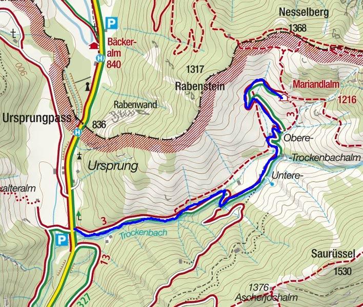 Mariandlalm / Trockenbachalm - Naturrodelbahn