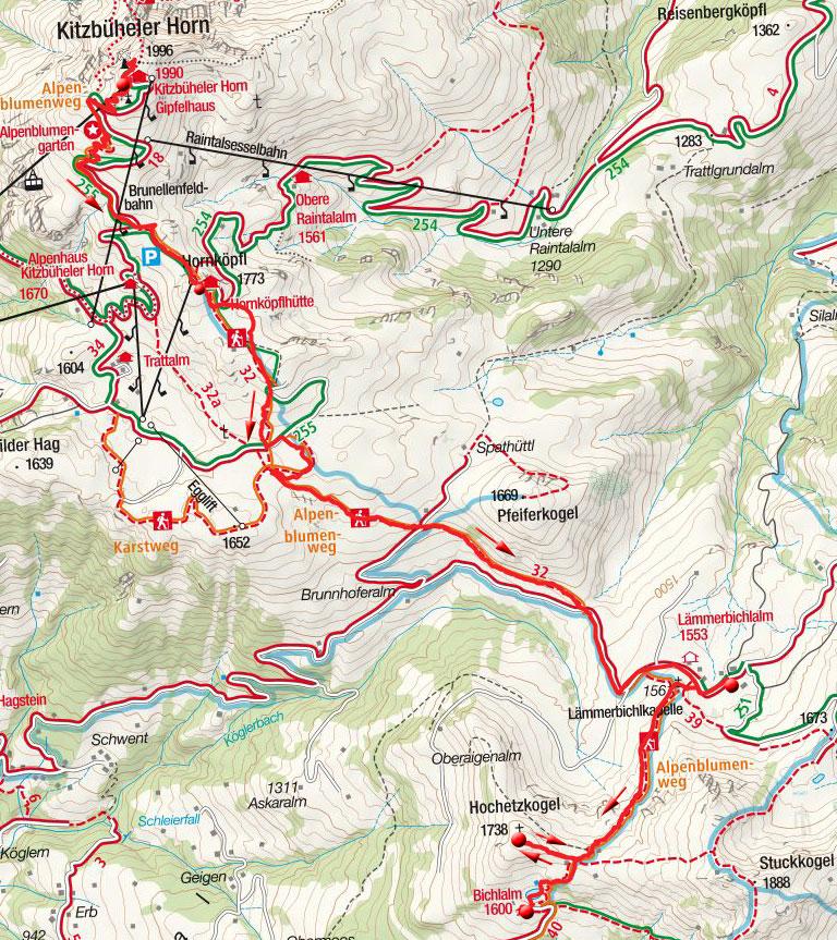 Kitzbüheler Horn – Das Alpenblumen Panorama