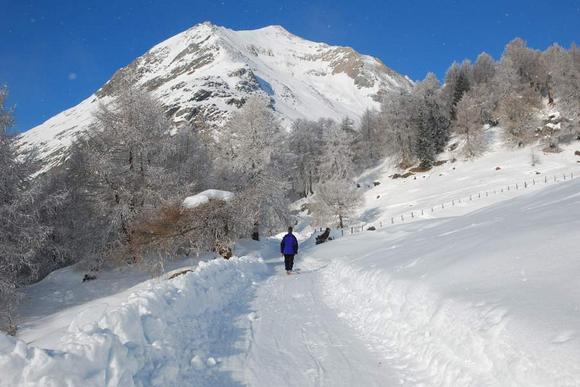Rodelbahnen-Regionen in Osttirol
