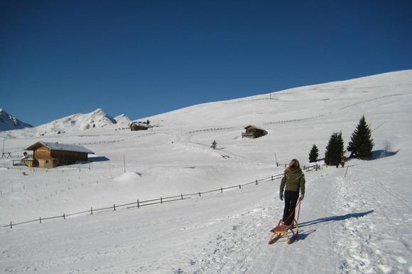 Rodelbahnen-Regionen in Südtirol