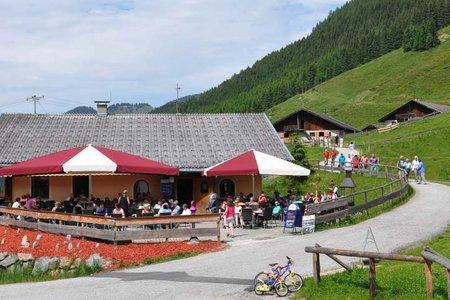 Alpengasthof Schönangeralm - Wildschönau
