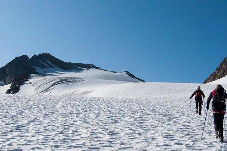 Falschungg Spitze (3361 m) vom Hochwildehaus