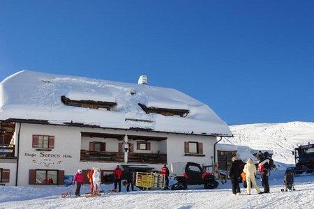 Senneshütte - Naturrodelbahn