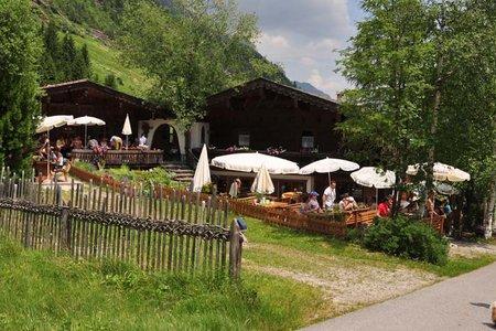 Steinach - Laponesalm