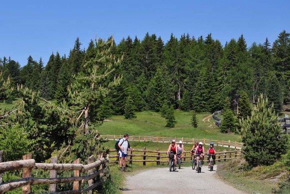 Mountainbiketouren in den Ostalpen