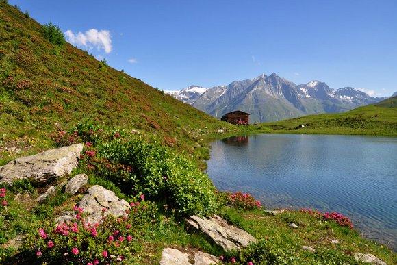 Besondere Wanderregionen in den Alpen