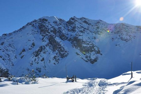 Nockspitze (2404 m) über Birgitzer Alm
