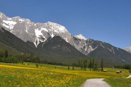 Bergdoktor-Radweg am Mieminger Plateau