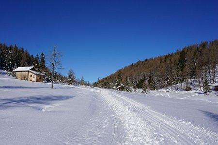 Winter-Rundwanderweg Waldraster Jöchl