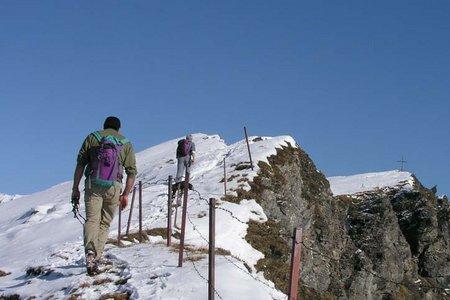 Hochgeneinerjöchl-Sumpfkopf (1981/2341 m) von der Edelraute