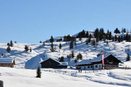 Tulper Gampis - Starkenfeldhütte