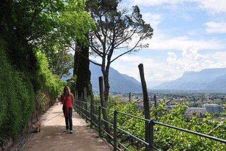 Wandern in Südtirol – die Region um Meran entdecken