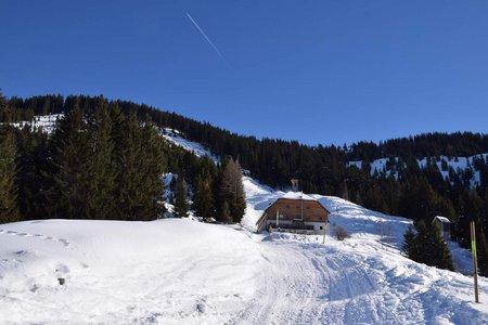 Kelchalm Bochumer Hütte - Naturrodelbahn