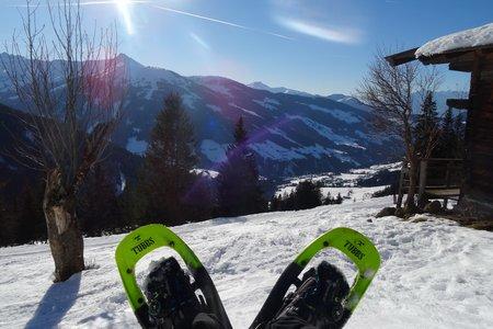 Feilmoos - Thaleralm - Rundwanderung, Alpbach