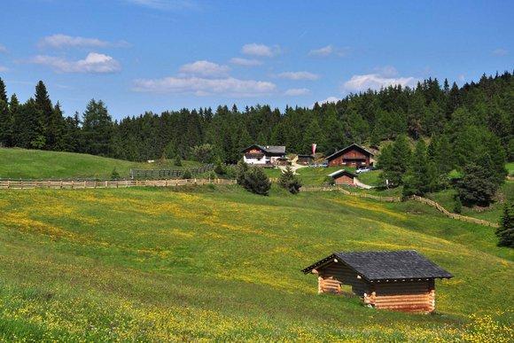 Lüsens/Rodeneck – Wandern auf der Rodenecker- & Lüsner Alm