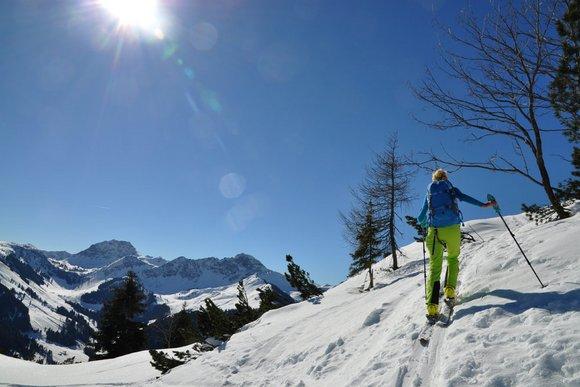 Skitouren in den Ost- und Westalpen