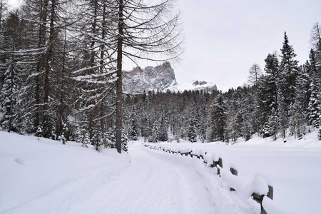 Pares / Munt d'Adagn - Naturrodelbahn