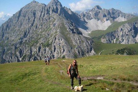 Trekking mit Hund im Tannheimer Tal