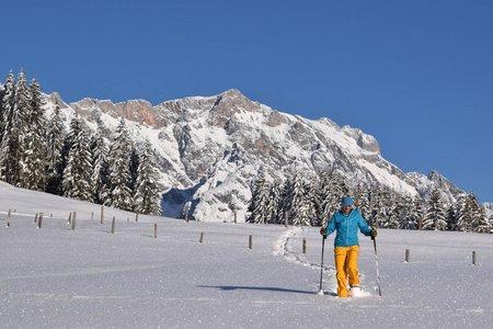 Jufenalm (1050 m) von Hintermoos