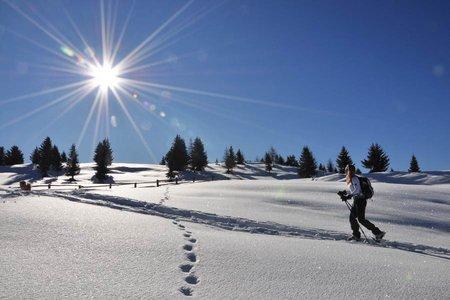 Infos zum Schneeschuhwandern