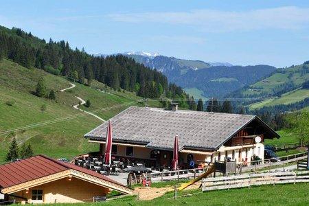 Hopfgarten - Alpengasthof Schönangeralm