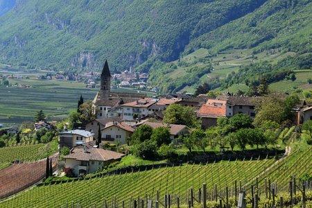 Südtiroler Weinstraßen Rundfahrt von Neumarkt