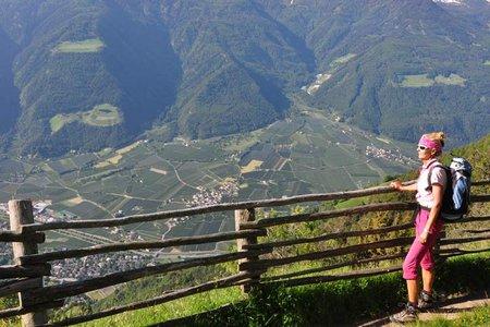 Meraner Höhenweg & 1000-Stufen-Schlucht