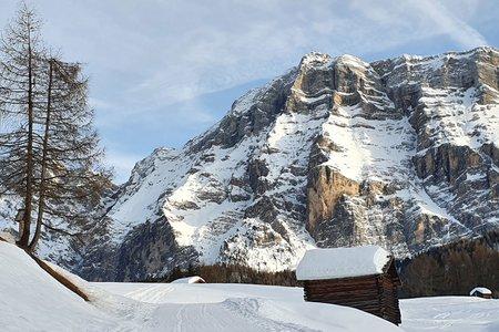 Winterwanderung Roda de Armentara Wiesen