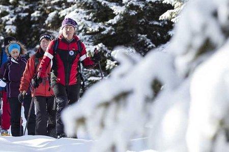 Schneeschuh-Wandertage im Genießer- & Wanderhotel Jägerhof in Walten