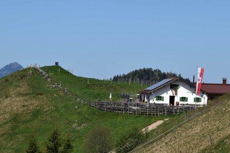 Altkaser Alm (1252 m) von Sachrang über die Mesner Alm