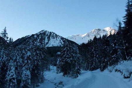 Alpengasthof Bergheim Fotsch - Naturrodelbahn